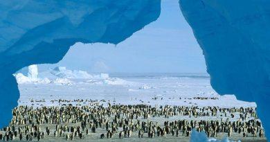 Антарктида – Атлантида или портал в параллельные миры?