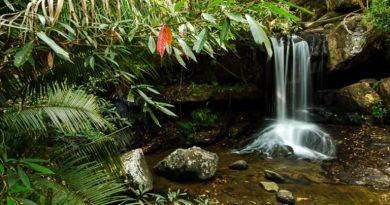 Кбаль Спеан — Долина тысячи линг