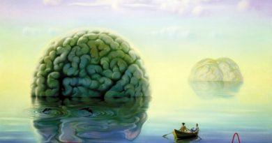 Готов ли наш разум к будущему?
