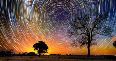 Биоцентрическая Вселенная