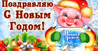 С Новым 2019 годом Жёлтой Свиньи!