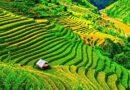 Рисовые террасы – Филиппинское чудо