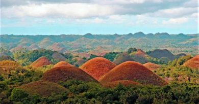 Шоколадные холмы — чудо острова Бохоль. Филиппины