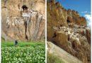 Фугтал Гомпа – монастырь-«соты» в скалах Ладакха.