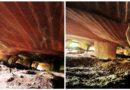 Загадочные гигантские пещеры провинции Чжэцзян. Китай